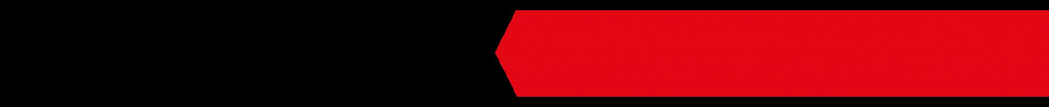 SCHWENK logo